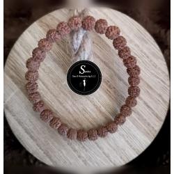 Bracelets oeil de Rudra - Graine sacrée indienne